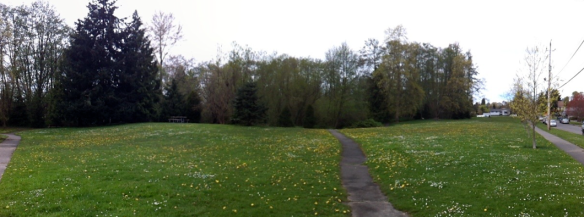 licton springs panorama